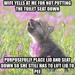 Baby Insanity Wolf - wife yells at me for not putting the toilet seat down purposefully place lid and seat down so she still has to lift lid to pee