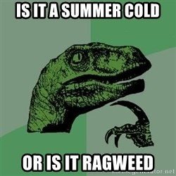 Raptor - Is it a summer cold or is it ragweed