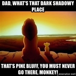 Simba - Dad, what's that dark shadowy place that's pine bluff, you must never go there, Monkey!