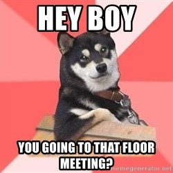 Cool Dog - Hey Boy  You going to that floor meeting?