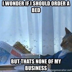 newspaper cat realization - I wonder if I should order a bed But thats none of my business