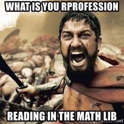 Spartan300 - What is you rprofession reading in the Math lib