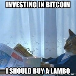 newspaper cat realization - investing in bitcoin I should buy a lambo