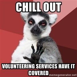 Chill Out Lemur - chill out volunteering services have it covered
