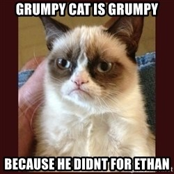 Tard the Grumpy Cat - Grumpy Cat is grumpy Because he didnt for Ethan