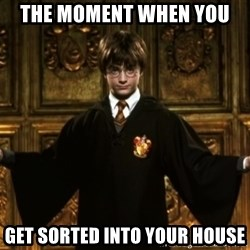 Harry Potter Come At Me Bro - the moment when you  get sorted into your house