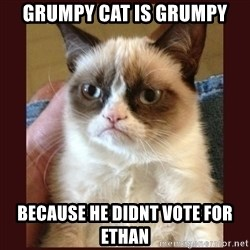 Tard the Grumpy Cat - GrumPy Cat is grUmpy BecaUse he didnt Vote for ethan