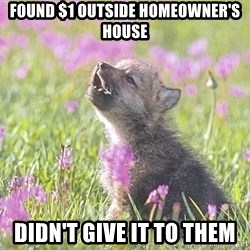 Baby Insanity Wolf - Found $1 outside homeowner's house Didn't give it to them