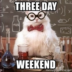 Science Cat - three day weekend