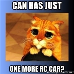 puss in boots eyes 2 - can has just one more rc car?