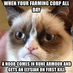 Angry Cat Meme - When your farming corp all day A noob comes in rune armour and gets an elysian on first kill
