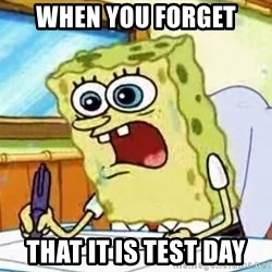 Spongebob What I Learned In Boating School Is - When you forget  That it is test day