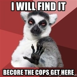 Chill Out Lemur - I will find it  Becore the cops get here