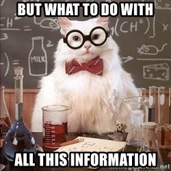 Science Cat - but what to do with ALl this information
