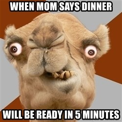 Crazy Camel lol - When mom says dinner  will be ready in 5 minutes