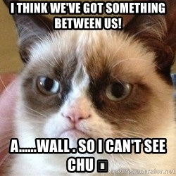 Angry Cat Meme - I think we've got something between us! A......wall . so I can't see chu 💔