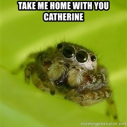 The Spider Bro - Take me home with you catherine