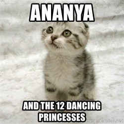 Can haz cat - ananya and the 12 dancing princesses