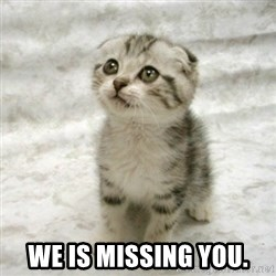 Can haz cat - We is missing you.