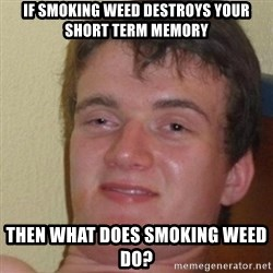 really high guy - If smoking weed destroys your short term memory Then what does smoking weed do?