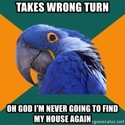 Paranoid Parrot - Takes wrong turn Oh god I'm never going to find my house again