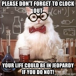 Chemistry Cat - Please don't forget to clock out your life could be in jeopardy if you do not!