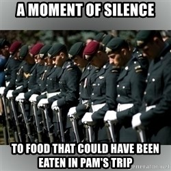 Moment Of Silence - A moment of silence To food that could have been eaten in Pam's trip