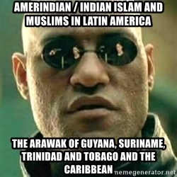 what if i told you matri - Amerindian / Indian Islam and Muslims in Latin America The Arawak of Guyana, Suriname, Trinidad and Tobago and the Caribbean