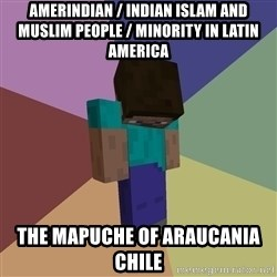 Depressed Minecraft Guy - Amerindian / Indian Islam and Muslim People / Minority in Latin America The Mapuche of Araucania Chile