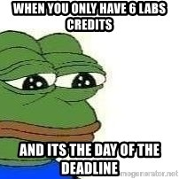 Sad Frog - when you only have 6 labs credits  and its the day of the deadline