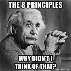 Albert Einstein - the 8 principles why didn't i                        think of that?