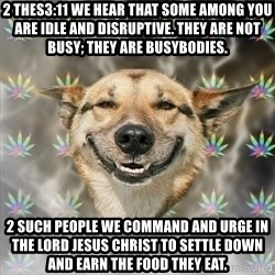 Stoner Dog - 2 Thes3:11 We hear that some among you are idle and disruptive. They are not busy; they are busybodies. 2 Such people we command and urge in the Lord Jesus Christ to settle down and earn the food they eat.