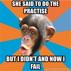 Stupid Monkey - She said to do the practise but i didn't and now i fail