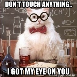 Science Cat - Don't touch anything.. I got my eye on you