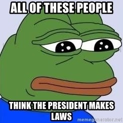 Sad Frog Color - All of these people Think the president makes laws