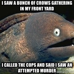 Bad Joke Eel v2.0 - I saw a bunch of crows gathering in my front yard i called the cops and said i saw an attempted murder