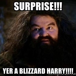 Yer A Wizard Harry Hagrid - SURPRISE!!! YEr A bLizzard harry!!!!