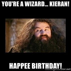 You're a Wizard Harry - You're a wizard... kieran! happee birthday!