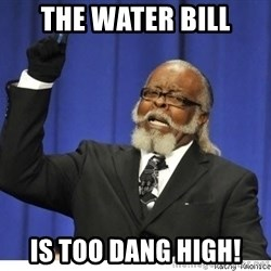 Too high - The Water bill Is too Dang high!