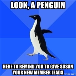 Socially Awkward Penguin - Look, a penguin Here to remind you to give susan your new member leads
