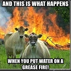 Evil Cows - and this is what happens when you put water on a grease fire!