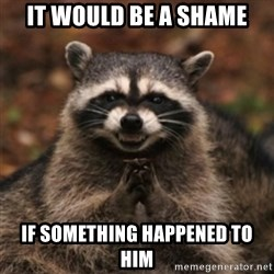 evil raccoon - it would be a shame if something happened to him