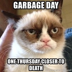 Grumpy Cat 2 - garbage day one thursday closer to death