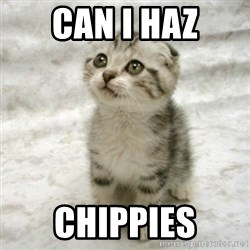 Can haz cat - Can I haz Chippies