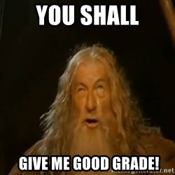 Gandalf You Shall Not Pass - YOU shall  GIVE ME GOOD GRADE!