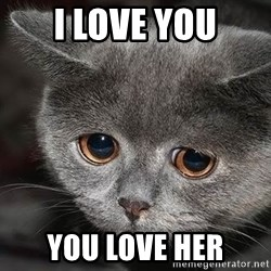 sad cat - i love you you love her