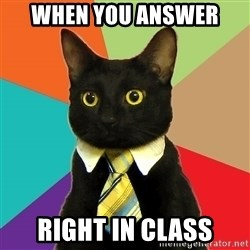 Business Cat - When you answer  right in class