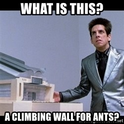 Zoolander for Ants - what is this? a climbing wall for ants?