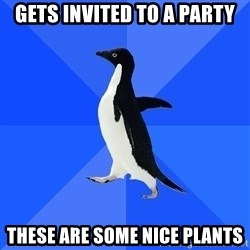 Socially Awkward Penguin - Gets invited to a party These are some nice plants