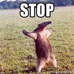 Anteater - Stop